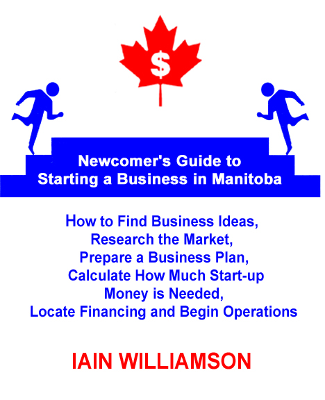 how to start a consulting business in manitoba